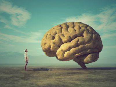 Evrimsel Psikoloji İle İlgili 7 Temel Yanılgı